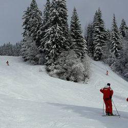 Les parlementaires montent au créneau pour alléger la cotisation des moniteurs de ski, guides et accompagnateurs en montagne