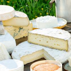 L'Appel de l'ANEM aux parlementaires pour soutenir les fromages de qualité issus de leurs terroirs